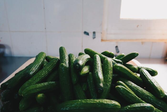 ポリポリとした食感とみずみずしさで、夏バテ気味でも食べやすいきゅうり。多めに買ったものの、レシピがワンパターンになっていませんか?さまざまな味つけの副菜から炒め物まで紹介するので、レパートリーを増やしてみましょう!