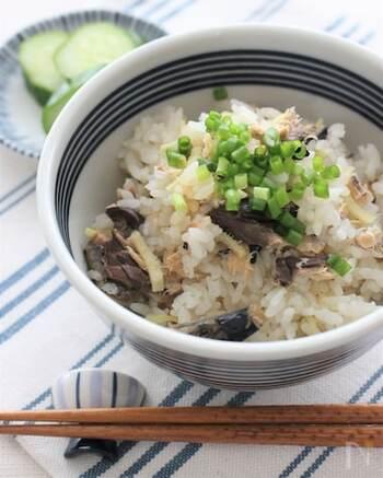 サバ缶を丸ごと炊き込みごはんにする斬新なレシピ。刻んだ生姜をたっぷりと入れることで、風味がさらに良くなります。味付けは濃くなりすぎないように、白だしを使うのがおすすめです。仕上げにネギを散らせば食欲をそそる見た目になりますよ。