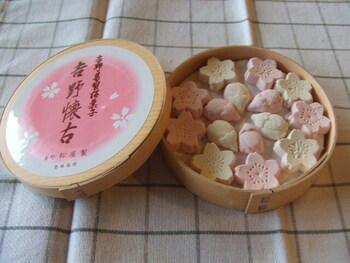 1842年(天保13年)創業の「東京松屋本店」は、葛菓子で有名な老舗です。こちらの「吉野懐古(よしのかいこ)は、吉野葛に四国の和三盆糖を練り込んだ干菓子。桜のつぼみと花の色合いが上品で、口に入れるとすっと溶けてしまう繊細な甘さです。