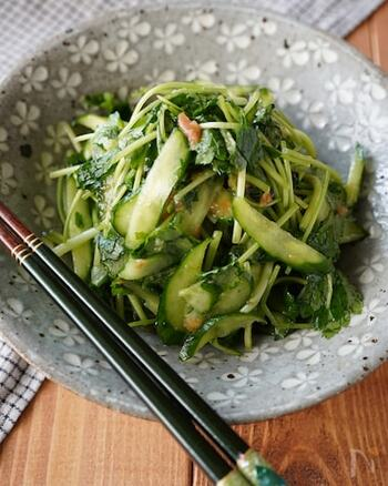 和えるだけで作れる三つ葉ときゅうりの梅ナムル。副菜としても、おつまみとしても使える便利なレシピです。ほんの少し加えた昆布茶が味のポイント!