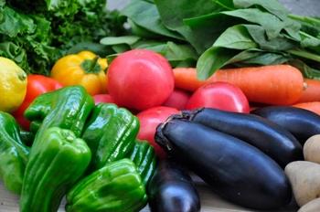 旬の食材で、体内の熱を冷ます。夏から始める「食養生レシピ」