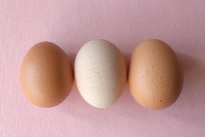 たんぱく質は、卵・大豆製品(豆腐や納豆、豆乳など)・お肉・魚の食品に多く含まれています。たんぱく質は、肌や皮膚だけでなく、髪や内臓など、わたしたちの身体の材料のもとになる、とても大切な栄養素です。お肉だけ、大豆製品だけなど偏らずに、いろんな食材をバランスよく食べて、タンパク質をしっかり摂るようにしましょう。
