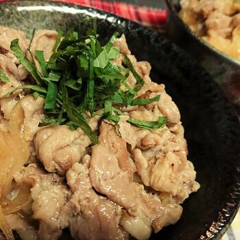 大人も子どもも大好きな丼物の豚丼は、手軽に作ることができますし、具材もバリエーション豊かに対応できるので忙しい親には持ってこいのメニューです。
