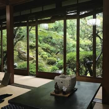 京都で最古の湯豆腐のお店なのが「奥丹」。創業はなんと江戸時代初期の1635(寛永12)年です。創業当初から脈々と受け継がれてきた伝統の味を、小川の流れる美しい庭園と共に楽しめます。