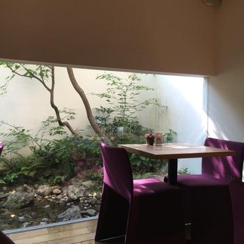 すっきりとシンプルな店内は和モダンな雰囲気。坪庭は四季折々の美しさを見せてくれます。
