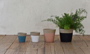サイズは4種類あり、それぞれカラーが異なります。優しい色合いはインテリアに馴染み、癒やし効果をアップしてくれそう。置きたい場所や入れる植物に合わせて選びたいですね。