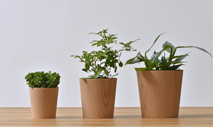 福井県産の河和田杉を削り出して作られたポットです。植物に優しく、とことん自然に寄り添っているのが魅力。サイズはSMLの3種類から選べます。