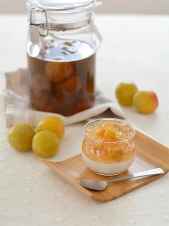 自家製の梅シロップのゼリーをのせた、優しい甘酸っぱさのミルクプリン。ゼリーをクラッシュたり、刻んだ梅を混ぜたりすることで、見た目だけでなく食感の変化も楽しめます。