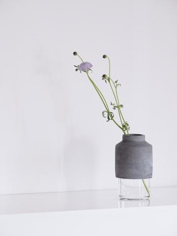 menuらしいコンクリートとガラスの異素材MIXのウィルマンベース。 フレッシュなお花もドライフラワーもどちらもよく似合うフラワーベースです。何も生けていなくても、置いてあるだけでオブジェのよう。