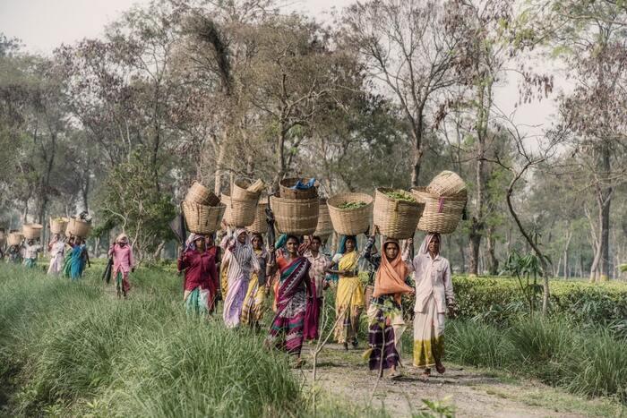 不衛生な布で生理処理をしていると不妊や死に至ることもあると医師から聞かされた主人公ラクシュミカントが、妻ガヤトリのためにナプキンを自作。しかし、世間はおろか妻にまで理解されない行動に村から弾圧されてしまいます。大学教授の使用人として働きながらナプキン開発し、やがてはインドに留まらずアフリカなどへも普及。多くの女性を救うことに繋がるサクセスストーリーと開発者の熱意や情熱に勇気が湧きます。