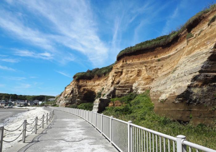 隣接する海水浴場から続く遊歩道からは、切り立つような断崖が迫ってくるような迫力を感じられます。約300万年前~40万年前の地層が今も残っているというのは、なんだか神秘的ですね。