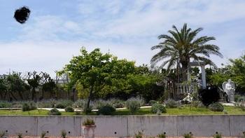 庭園にはオブジェやツリーハウスなどもあります。ハーブの香りや花の色、海風を感じながらのんびり過ごせますよ。