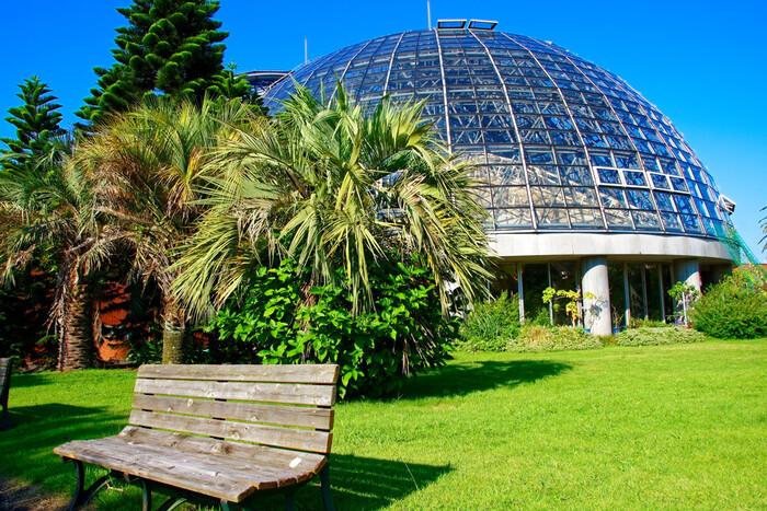 """夢の島公園の敷地内にある「夢の島熱帯植物園」は、ドーム型の天井が特徴的。""""熱帯植物とわたしたちの生活との関わり""""をコンセプトにしていて、くつろぎながら植物について学ぶことができますよ。"""