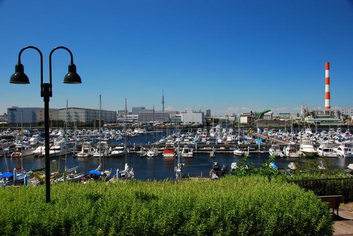ドラマや映画のロケ地として使われることの多い「東京夢の島マリーナ」は、公園の北側に位置します。係留されている船を見ているだけでも、なんだか楽しい気分になりませんか?