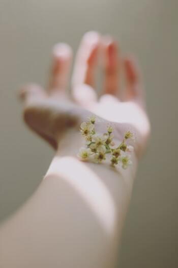 そのためにも、お花に水をあげるように、鏡の中の自分に毎日「今日も1日頑張ったね、素敵だよ」などと前向きで明るい言葉をかけてあげてください。そしてニッコリ微笑んでみてください。「シミやシワばかり」とか「疲れた顔ね」などと思ったり言ってしまうのはNGです。