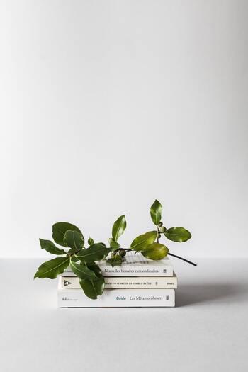 働く女性のために、季節ごとに選書した本を提供してくれる「季節の本屋さん」。  気になるタイトルは、届いてからのお楽しみ。「絵本」から「文庫」「単行本」まで、「2冊セット」を基本にしています。