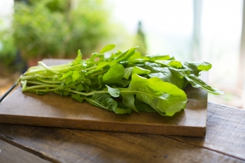 □植え時:4〜6月、9〜10月 □収穫:5月〜8月、10月〜12月 □サラダや肉料理の付け合わせに人気のハーブです。