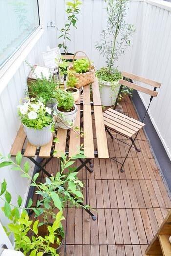 鉢植えの植物たちは、写真のように雑貨を飾るように思い思いの場所に並べるとアウトドアリビングをみずみずしく彩ってくれます。  鉢植えが風などで倒れないよう、安全な場所に置くようにしましょう。