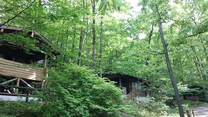 都心からアクセスしやすい埼玉県秩父にある「PICA秩父」。テニスコートやアスレチックを有する「秩父ミューズパーク」内にあり、アクティブに過ごしたい方にぴったりです。都心から1時間ほどのところにあるとは思えない、豊かな森はリフレッシュにもおすすめ。