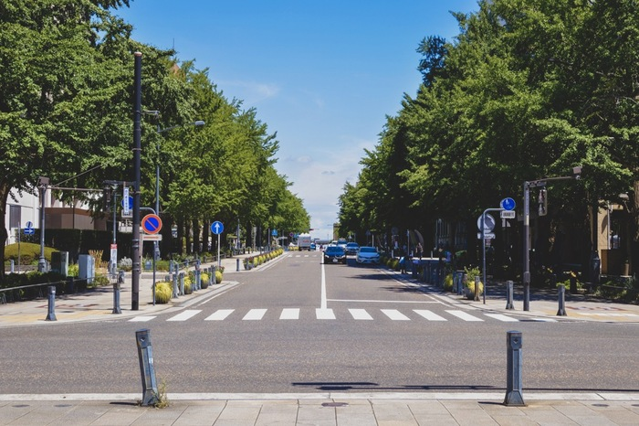 海から少し離れた「日本大通り」にも足をのばしてみてはいかがでしょうか?スコットランドの土木技術者であるリチャード・ヘンリー・ブラントンが設計した日本初の西洋式街路です。明治時代には人力車や車が行き交っていたんだそう。道の両側並ぶ銀杏並木からは、新緑や紅葉など四季折々の表情が楽しめます。