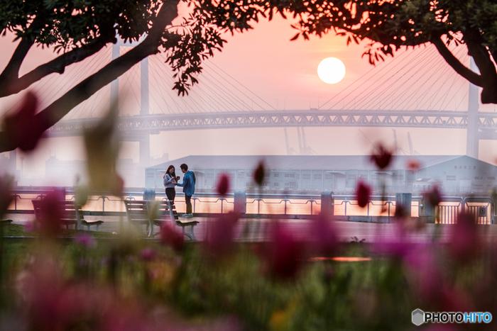 1930年に開園した山下公園は、横浜を代表するポットです。関東大震災の復興事業のシンボルとして造られ、74,000平方メートルの敷地内には「赤い靴はいてた女の子像」「かもめの水兵さんの歌碑」など、童謡のモニュメントや歌碑などもありますよ。