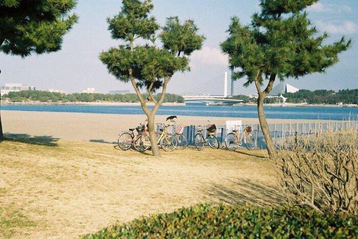 海を囲んでジョギングコースやバーベキュー場が併設されていて、地元の方の憩いの場になっています。周りに高い建物がないので、空と海を一望できる開放感抜群の公園ですよ。