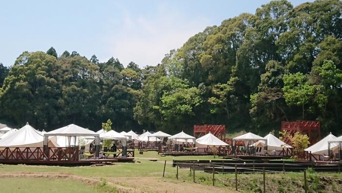 千葉県香取市にある「THE FARM」は、その名の通り農園にあるキャンプ場。野菜の収穫体験やカヌーツーリングなど、都会では経験できないアクティビティも施設内で満喫できると人気です。