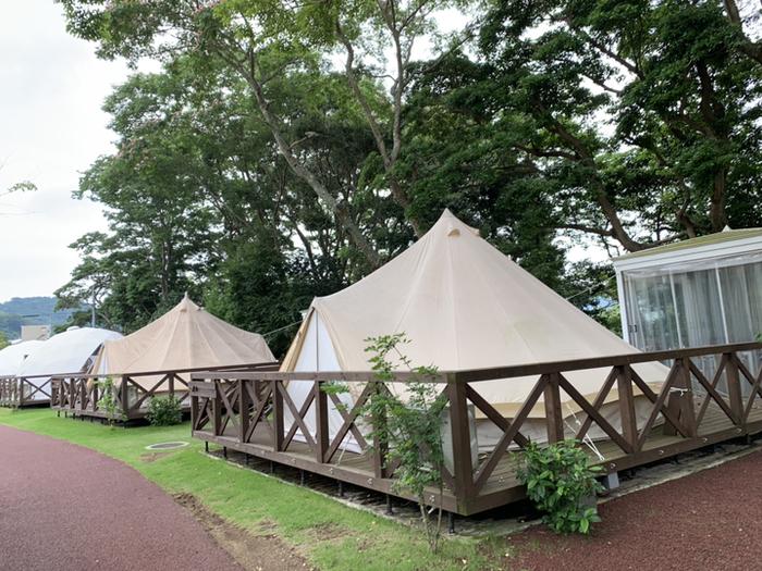 ゲストルームは、一般的なテントやドーム型のテント、トレーラーハウスの3タイプ。
