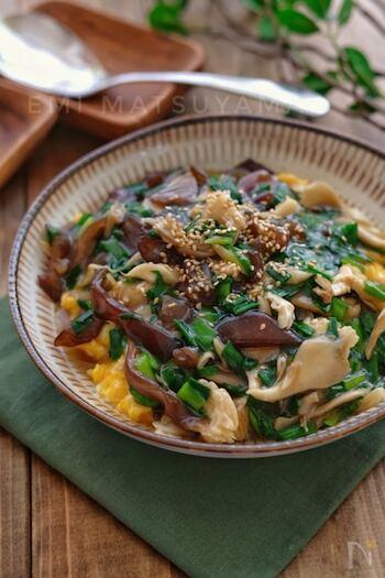 魅力を知れば、もっと食べたくなる!「きくらげ」の食感も美味しいレシピ