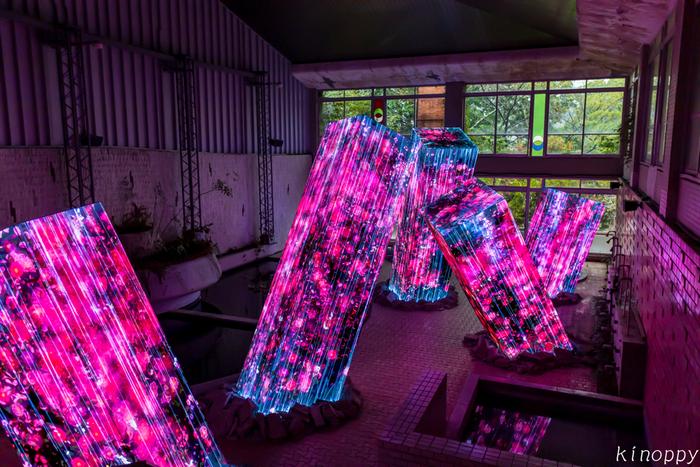 そんな御船山楽園で2015年から開催されているのが森のアート展「チームラボ かみさまがすまう森」。