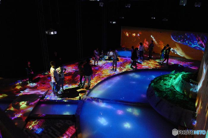 佐賀「御船山楽園×チームラボ」のアート展*幻想的な光の世界に酔いしれて