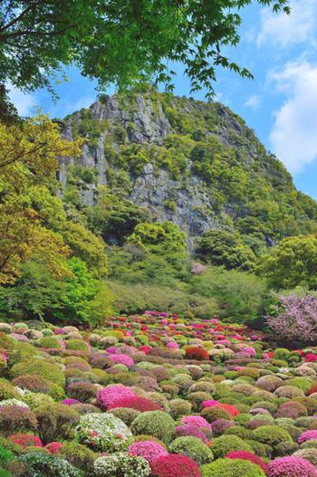 1845年に佐賀藩第28代武雄領主・鍋島茂義によって造られた「御船山楽園」。50万平米もの広さを誇る敷地には桜やツツジ、もみじなど、四季折々の木々や花が植えられています。