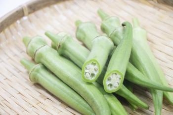 夏バテ予防には『食物繊維』を。おすすめ食材5選&レシピ集
