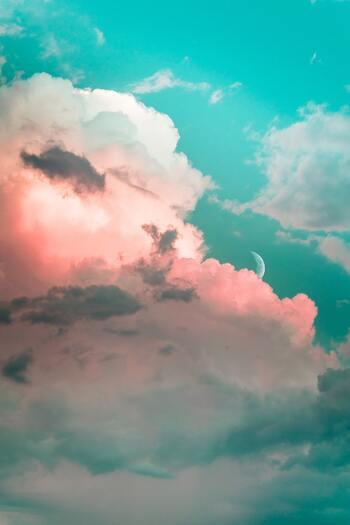 ふと気づく「雨のにおい」や、思わず灯りを消したくなる「月明かりの夜」…そんな、「今日この瞬間」の空気にマッチした一本は、儚さを増してよりロマンチックに感じられたり、迫力が何倍にも感じられたりするはず。  登場人物と同じ空気の中で過ごした時間は、映画と現実世界の境目さえも曖昧になるような錯覚さえ覚える特別なひと時になるでしょう。  さぁ、今日の空のご機嫌にあうのは、どの一本?