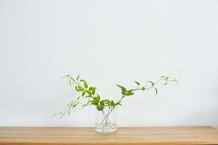 まずはグリーンを入れて縦横の黄金比を決めましょう。ちなみに花瓶に入れる水の量は花瓶の3分の1程度がベストです。水の入れ替えは2日に1回行うとお花が長持ちしますよ。