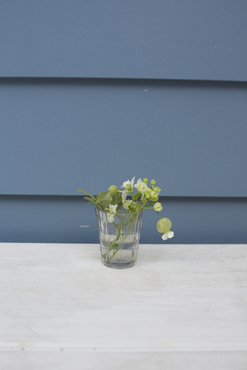 パンジーやセンニチコウなどの小さなお花は花瓶も小さいものを使うのが良いでしょう。わざわざ花瓶を買わなくても、ジャムなどの空き瓶でOKです。お部屋のちょっとした空間にさりげなく置いておくと可愛いですよ♪
