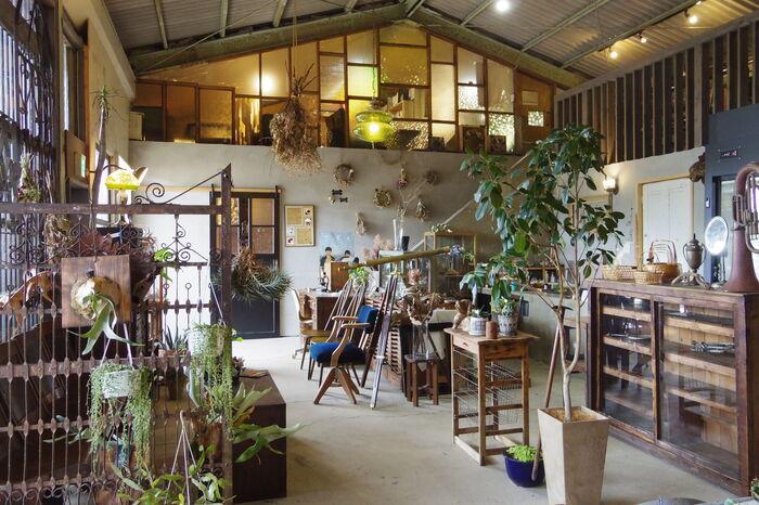 長崎県佐世保市にある雑貨屋さん、「TESORA(テソラ)」。もともと倉庫だった建物を利用した店舗は解放感抜群で、地元の方に愛されているお店です。こちらでもレトロな古家具・古雑貨を扱っていますよ。