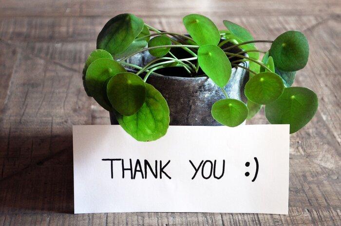 嬉しい言葉は嬉しい感情を生み、良い言葉が良い感情を育て、あなたとあなたの周りの人の原動力となり幸福度を高めます。まずは、あなたが感謝の気持ちを伝えていくことで、周りからも感謝をされるようになり、幸せの連鎖を生むでしょう。