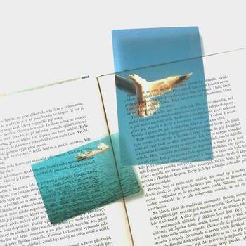 本好きの間で人気のフォトグラファー・安堂真季さんのしおりは、ずっと眺めていたくなるような海の風景。文庫本にぴったりのサイズ感です。