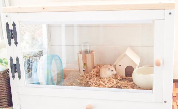 ハムスターを飼うのに広大なスペースは必要ありません。三分の一畳ほどのスペースがあれば、十分飼育できます。お部屋の片隅で気軽に飼うことができるので、おうちのスペースが限られている方にもおすすめです。