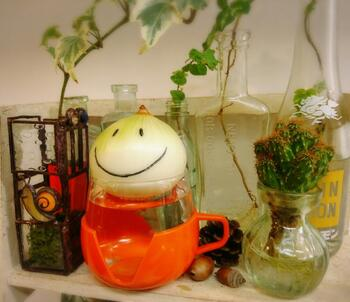 野菜の水耕栽培は育てて食べるまでの楽しさがありますが、食べられなくても鑑賞するだけでも美しく楽しいものもたくさんあります。こちらのように玉ねぎに顔を書いたら見る度にほっこりしそう。もちろん植物の水耕栽培も、より自分らしく楽しむアイデアが満載。みんながやっている素敵なアイデアピックアップしました。