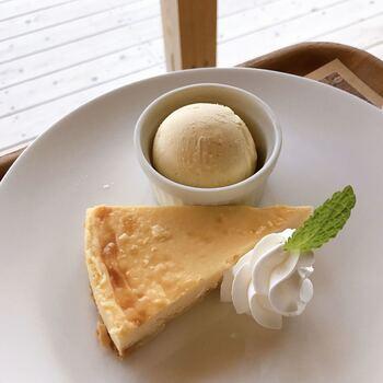 ニューヨークチーズケーキやかき氷などのデザートも人気。店内やテラスからは、下田湾の絶景を望むことができるのも魅力のひとつです。