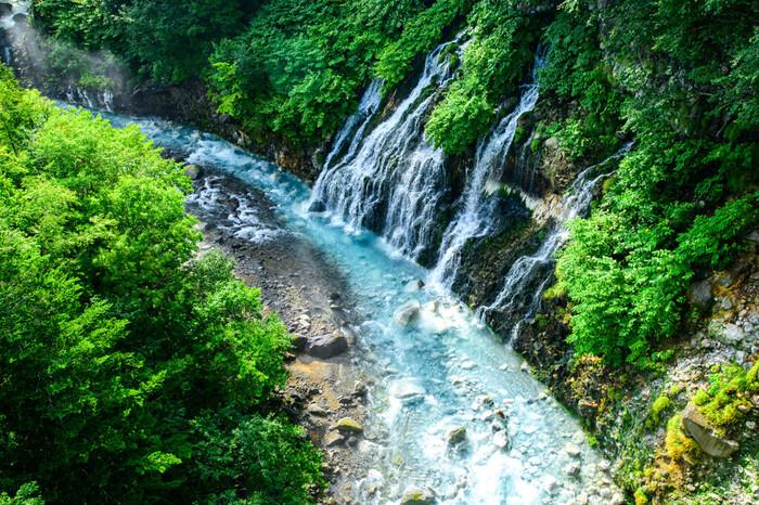 白ひげの滝は、落差30メートル、滝幅40メートルの滝です。雄々しい岩肌を撫でるように流れ落ちるこの白ひげの滝は「ブルーリバー」の異名を持つ美瑛川に注いでおり、滝とコバルトブルーの川面が融和した素晴らしい絶景を臨むことができます。