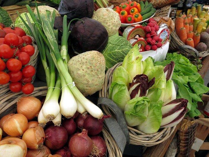 ポイントは「甘」と「白」で夏の疲れを残さない。秋からはじめる「食養生レシピ」