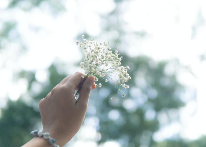 よりよく生きていくために。あなたの心にそっと寄り添う「禅のことば」