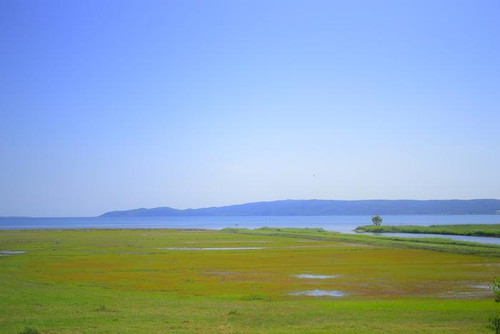 能取湖は、オホーツク海に通じる海跡湖で網走国定公園の一部に属する湖です。ここは、日本一といわれるほどのサンゴソウが群生している場所として知られており、春から夏にかけて、湖は緑色に覆われています。