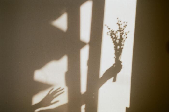 影の写真であれば、おうちでも気軽に挑戦できます♪子どもの時にやった影絵遊びのような写真も楽しいです◎