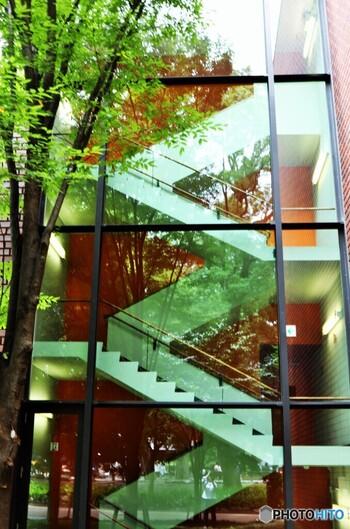 収蔵されている立体作品はもちろん、旧館・新館それぞれの建築美もすばらしい!アートラウンジやレストラン・カフェも併設されていますので、東京都美術館を楽しみつくしましょう。