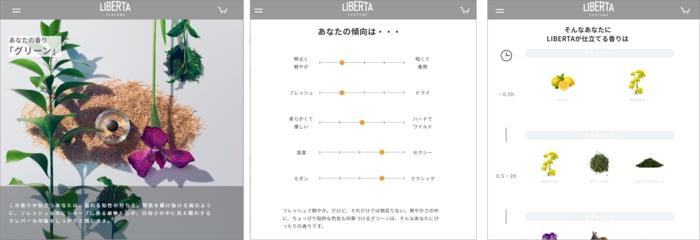 画像上/HP上での診断結果画面