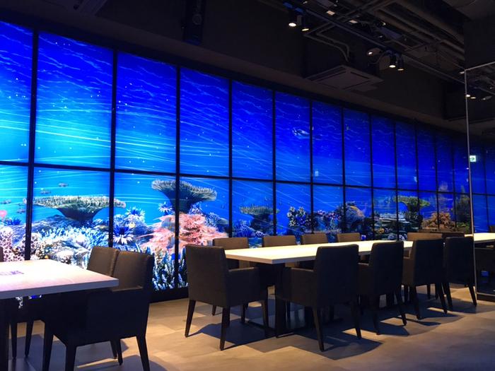お子さんと築地ランチを楽しみたいときは「魚月(なづき)」がおすすめです。約200台のモニターで囲まれた店内は、プロジェクションマッピングで海中のレストランのような雰囲気。ここなら、お子さんも楽しみながらお料理を待てますね。